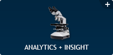 Analytics + Insight